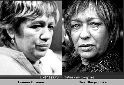 Галина Волчек и Эва Шикульска напоминают друг друга