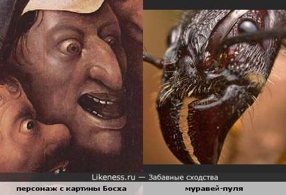 Зловещий персонаж Иеронима Босха и муравей