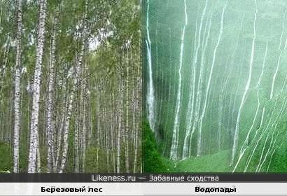 Березовый лес и водопады