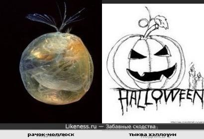 Хэллоуинские символы
