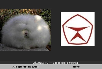 Ангорская шерсть - гарантия качества