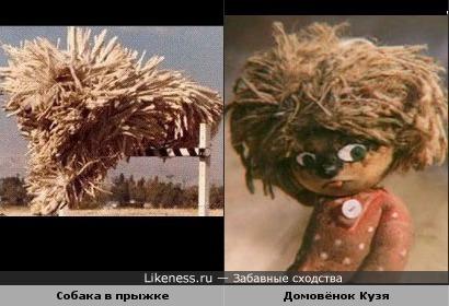 Убежавшая шевелюра Домовёнка Кузи :)