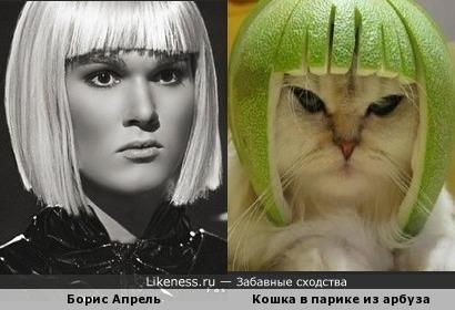 Бориска и киска