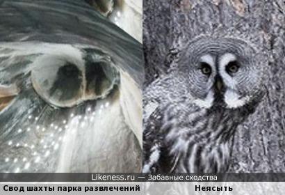 Соляной свод шахты парка развлечений Салина Турда в Румынии и неясыть