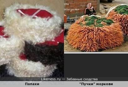 Огромные пучки морковки на рынке и кубанские папахи