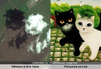 Облако и его тень на фото со спутника в Яндекс.Картах напомнили двух котят