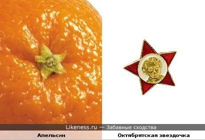 Плодоножка апельсина похожа на октябрятскую звездочку