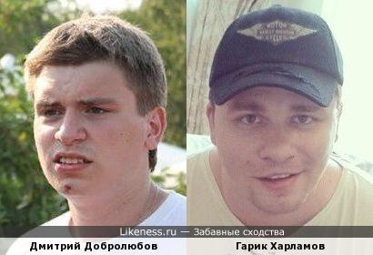 Дмитрий Добролюбов похож на Гарика Харламова