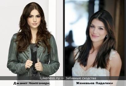 две актрисы, по-моему похожи