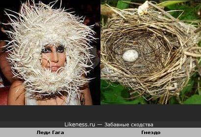 Головной убор у Леди Гага похож на гнездо