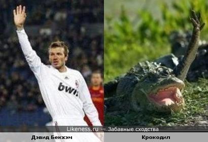 Свободная касса ))))))