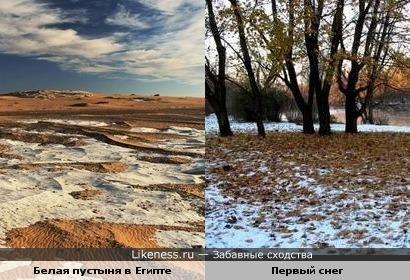 Белая пустыня в Египте похожа на осеннюю листву под первым снегом