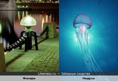 Фонарь напомнил мне медузу