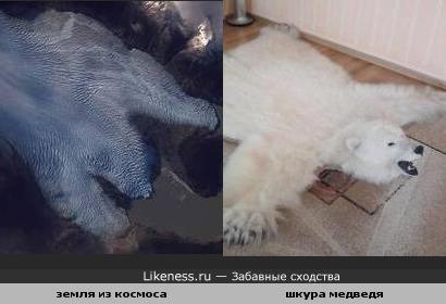 Участок земли на фотографии из космоса похож на шкуру белого медведя
