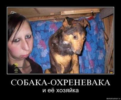 Хозяйка похожа на свою собаку