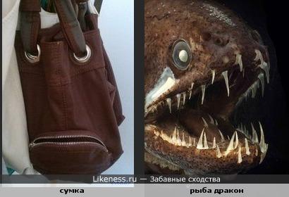 Хищная сумка )))))))