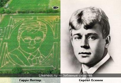 Рисунок Гарри Поттера на кукурузном поле похож на Сергея Есенина