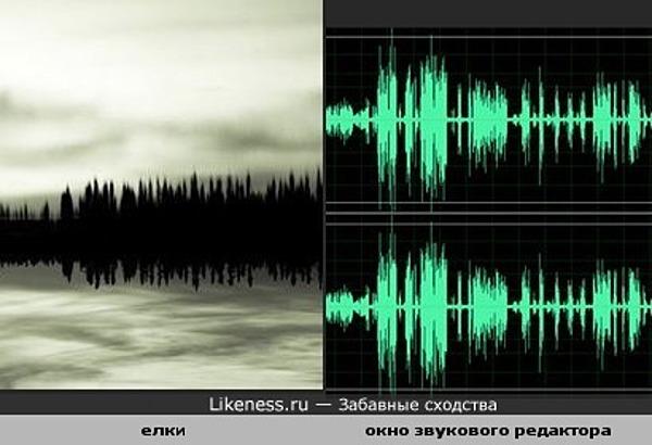 Елки и их отражение в воде похожи на звуковые волны.