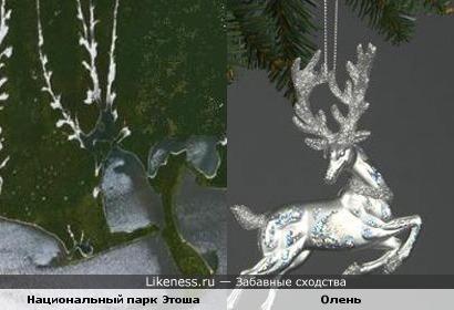 Водоем в национальном парке Этоша с высоты птичьего полета похож на оленя