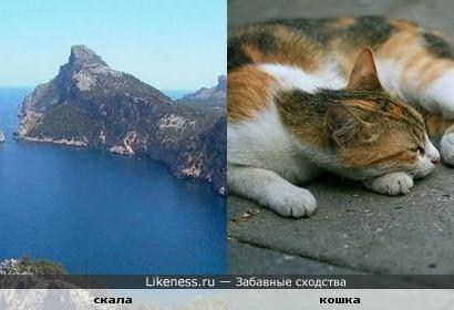Скала похожа на спящего кота