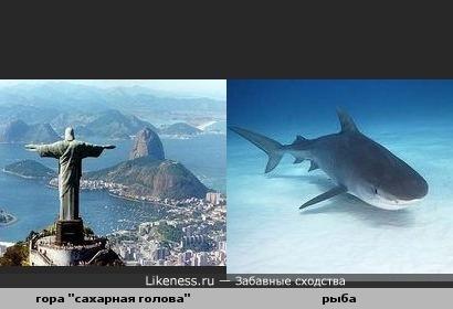"""Вид на гору """"Сахарная голова"""" в Рио-де-Жанейро со стороны статуи Христа похож на рыбу"""