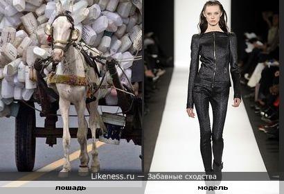 Лошадка с модельной внешностью (незабавное сходство)