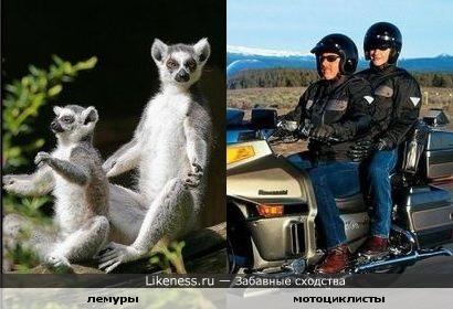 Двое на мотоцикле