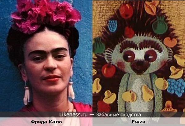 Ежик из мультфильма напомнил Фриду Кало