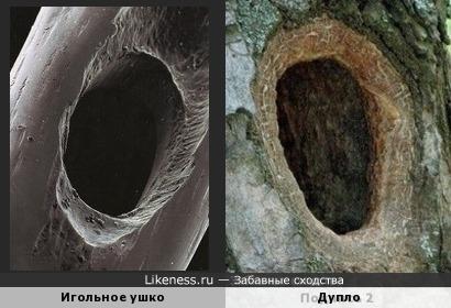 Игольное ушко под микроскопом похоже на дупло