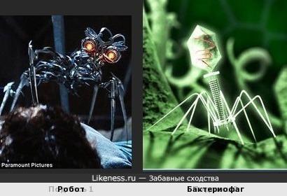 Робот похож на Бактериофаг