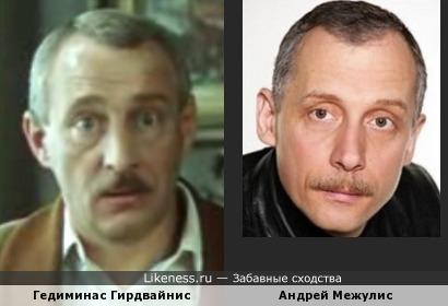 Гедиминас Гирдвайнис и Андрей Межулис