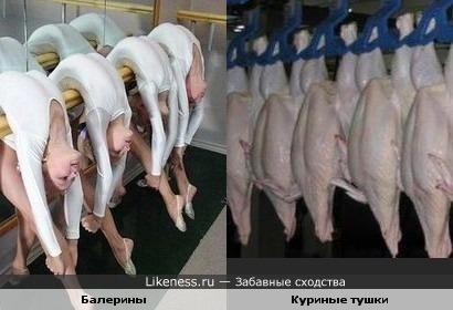 балерины и куриные тушки)))