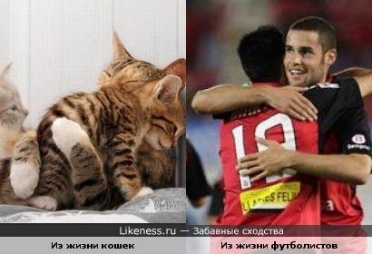 похожие моменты)