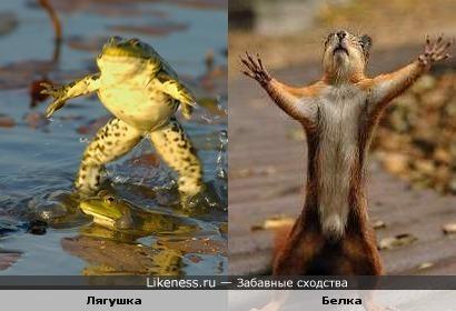 дай, я тебя обниму!!!!)))))