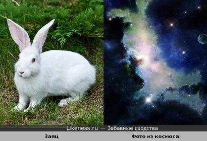 на этом фото из космоса мне привиделся зайка))))))))))