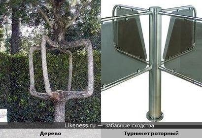 а это дерево похоже на турникет))