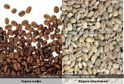 зерна кофе и перловой крупы похожи)