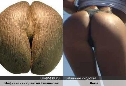 ogromnie-oreoli-soskov-porno