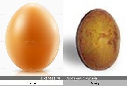 Фрукт чику похож на яйцо