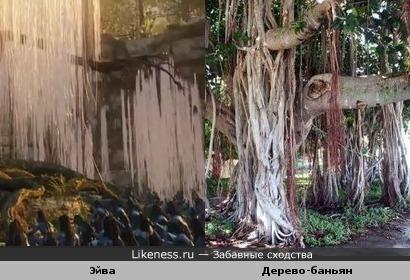 дерево голосов из аватара=дерево-баньян