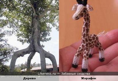 дерево похоже на жирафика))