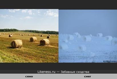 снопы сена и снопы снега))