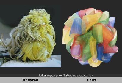 Пернатый бант))