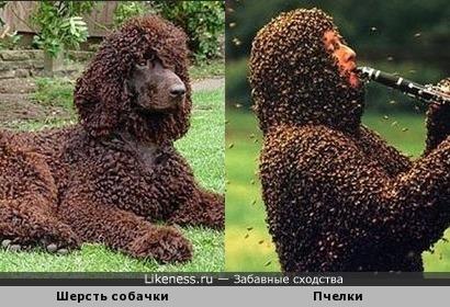 необычные наряды)))