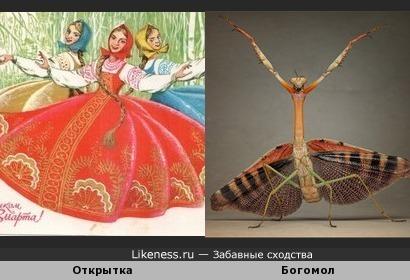 танцы богомола