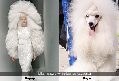 Платье невесты похоже на пуделя