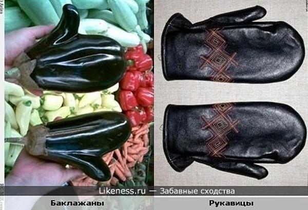 рукавички заморские баклажанные