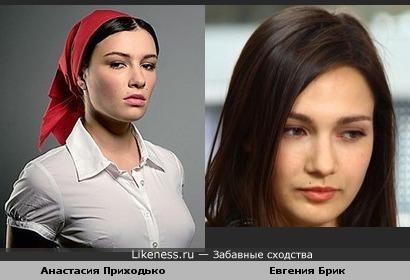 Анастасия Приходько похожа на Евгению Брик