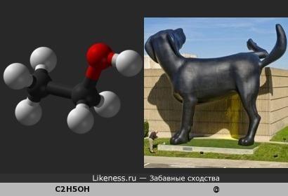 Молекула этилового спирта похожа на собаку
