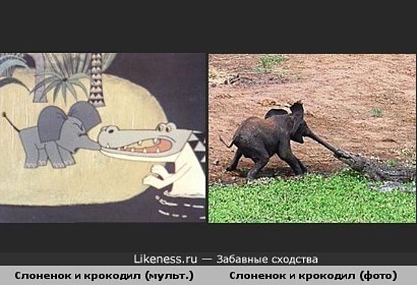 Слоненок и крокодил из мультфильма похожи на настоящих.